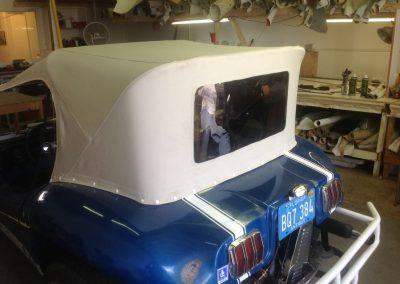 buggy top